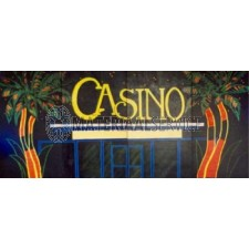 Las Vegas decor 5 mtr breed 2,5 mtr hoog